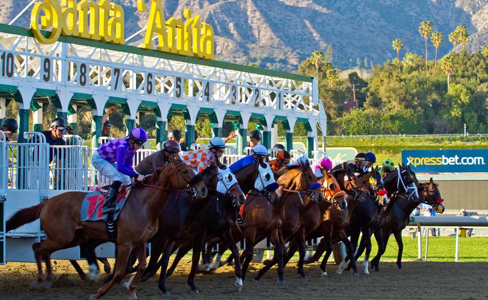 The Race Analyzer